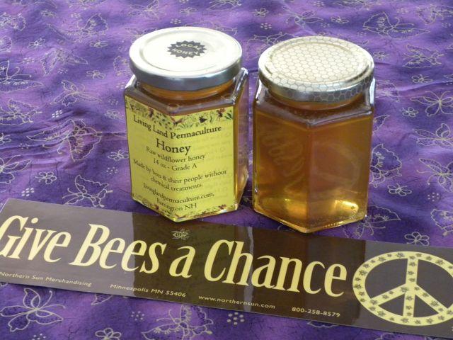 Local Honey (#1)